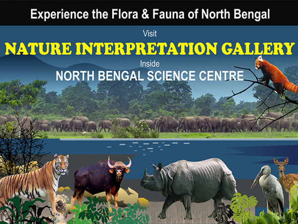 Nature Interpretation Gallery